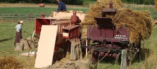 Beamish Agricultural Show