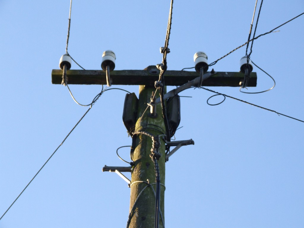 Telegraph pole, complete with cross-arm and insulators