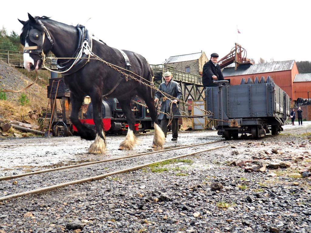 Horse Shunting 2