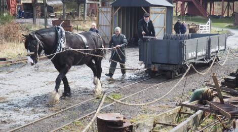 WW1 Horse shunting...